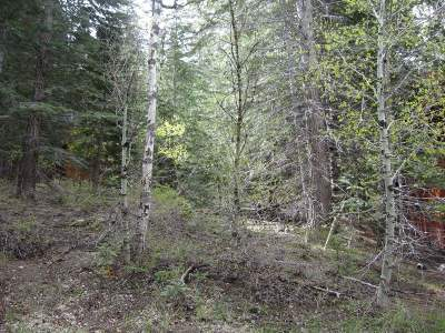 June Lake Residential Lots & Land Active Under Contract: Lot #5 Piute Drive