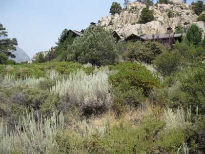June Lake Residential Lots & Land Active-Extended: Lot 1 Bay Street