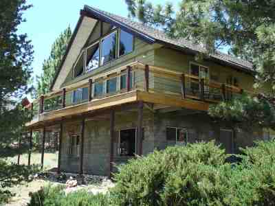 Bridgeport Single Family Home For Sale: 11642 Twin Lakes Road