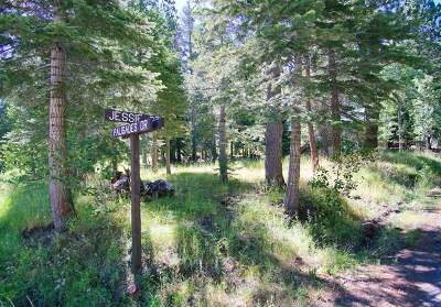 June Lake CA Residential Lots & Land For Sale: $119,500