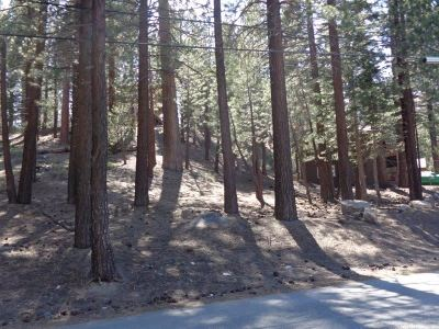 Mammoth Lakes Residential Lots & Land For Sale: 123 Alpine
