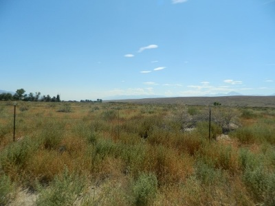 Bishop Residential Lots & Land For Sale: 435 Dawson Ranch