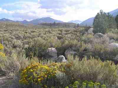 Bridgeport Residential Lots & Land Active-Extended: Lot 24 Hackamore