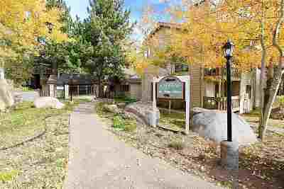 Mammoth Lakes Condo/Townhouse For Sale: 167 Meadow Lane #68