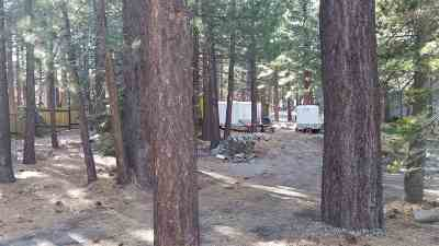 Mammoth Lakes Residential Lots & Land Active-Price Chg: 118 Lupin Street