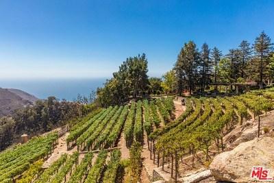 Malibu Single Family Home For Sale: 3640 Noranda Lane