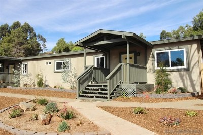 Escondido Single Family Home For Sale: 1767 Foothill View Pl