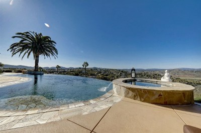 Poway Single Family Home For Sale: 13202 Highlands Ranch Rd