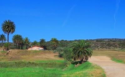 Beaumont, Corona, Hemet, Lake Elsinore, Menifee, Moreno Valley, Murrieta, Perris, Riverside, San Jacinto, Temecula Single Family Home For Sale: 43000 Stanley Road
