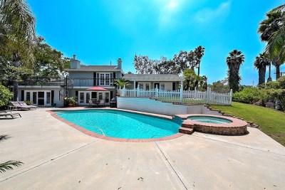 Vista Single Family Home For Sale: 3160 Fruitland Dr