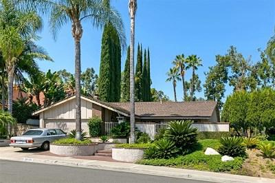 Orange County Single Family Home For Sale: 26051 Via Remolino