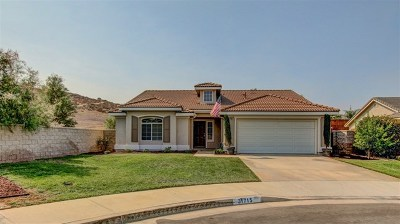 Winchester Single Family Home For Sale: 31715 Palo Verde Ct