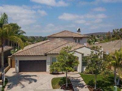 Chula Vista Single Family Home For Sale: 802 Hawksview Pl.