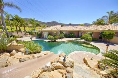 El Cajon Single Family Home For Sale: 3525 Caroway Ct