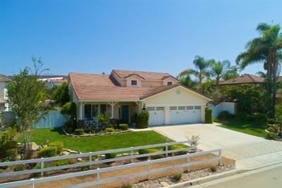 Oceanside Single Family Home For Sale: 1471 Belmont Park Rd