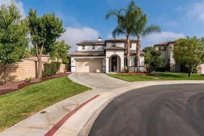 Menifee Single Family Home For Sale: 29902 Angler Lane