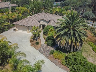Vista Single Family Home For Sale: 1701 Hilo