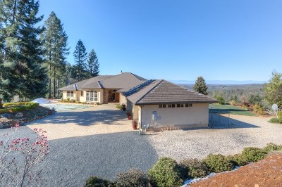 Paradise Single Family Home For Sale: 1500 Lofty View Drive