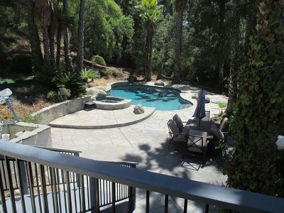 Escondido Single Family Home For Sale: 10374 Eagle Lake Dr