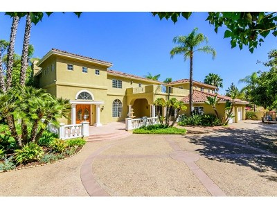 Poway Single Family Home For Sale: 13591 Ranch Creek Ln