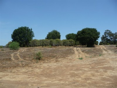 Fallbrook Residential Lots & Land For Sale: Olive Hill Rd.