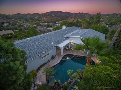 Vista Single Family Home For Sale: 1139 York Dr