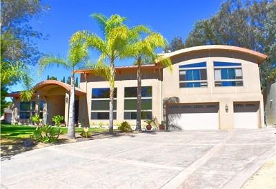 Oceanside Single Family Home For Sale: 3110 Lynn Ct