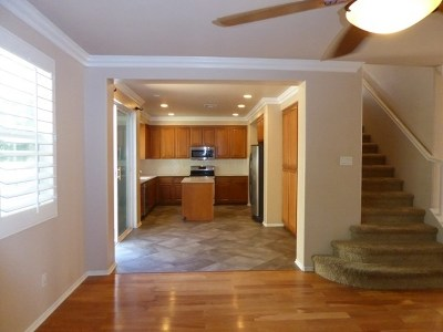 San Marcos Single Family Home For Sale: 449 Camino Hermoso