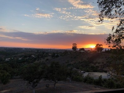 Fallbrook Single Family Home For Sale: 1415 Via Chaparral