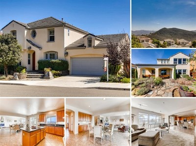 San Marcos Single Family Home For Sale: 729 Hollowbrook Court