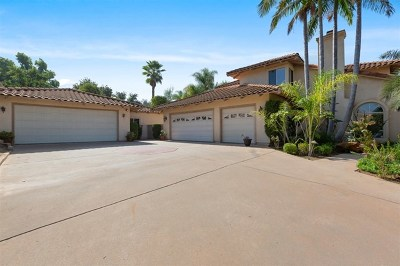 Escondido Single Family Home For Sale: 2460 Briarwood Ct