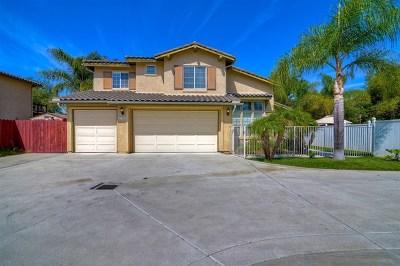 Vista Single Family Home For Sale: 276 Amelia Ct