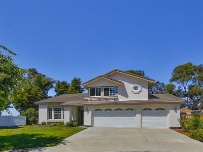 Encinitas Single Family Home For Sale: 495 Via Malaga