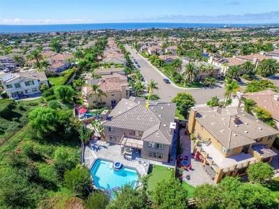Carlsbad Single Family Home For Sale: 1269 Belleflower Rd