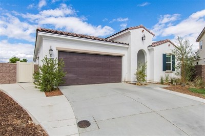 Lake Elsinore Single Family Home For Sale: 29333 Bent Grass