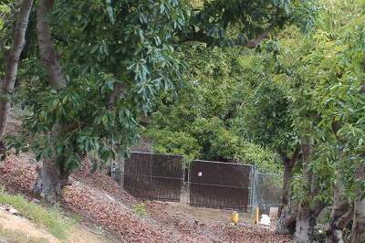 Fallbrook Residential Lots & Land For Sale: Palo Vista