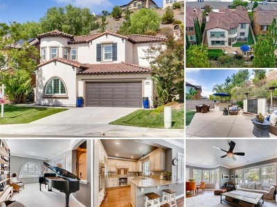 San Marcos Single Family Home For Sale: 678 Weatherstone Way