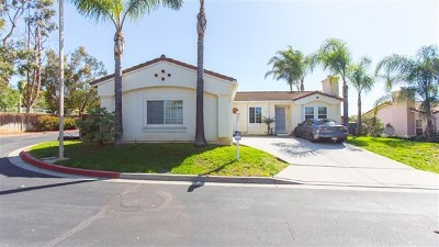 Vista Single Family Home For Sale: 2102 Verona Hills Ct.