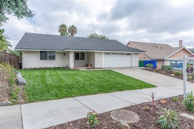 Oceanside Single Family Home For Sale: 4179 Terry St
