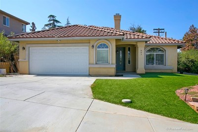 Escondido Single Family Home For Sale: 901 Brenna Hills Place