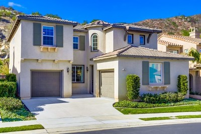 San Marcos Single Family Home For Sale: 592 Via Del Caballo