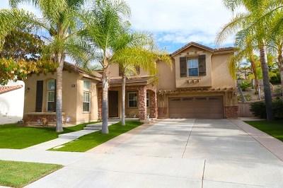 Chula Vista Single Family Home For Sale: 1463 Lost Creek Rd.