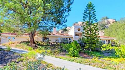 Escondido Single Family Home For Sale: 28436 Fallen Tree Lane