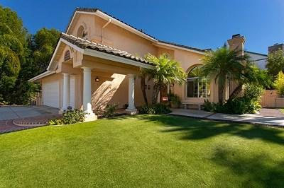 Escondido Single Family Home For Sale: 1261 Oak View Way