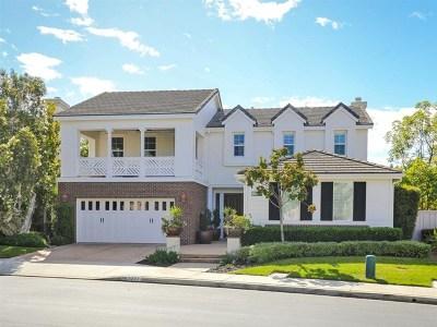 Carlsbad Single Family Home For Sale: 3227 Avenida Aragon
