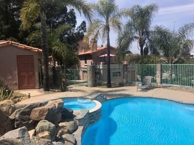 Escondido Single Family Home For Sale: 28443 Cerveza Ct
