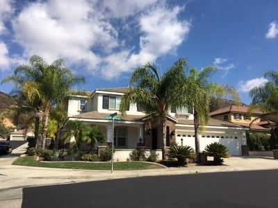Canyon Lake, Lake Elsinore, Menifee, Murrieta, Temecula, Wildomar, Winchester Rental For Rent: 23910 Hollingsworth