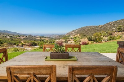 San Marcos Single Family Home For Sale: 27567 N Twin Oaks Valley Rd