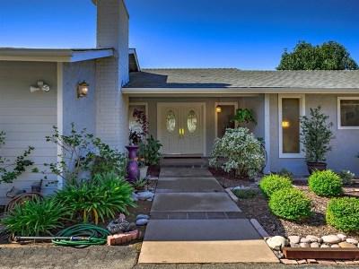 Fallbrook Single Family Home For Sale: 134 Rancho Camino