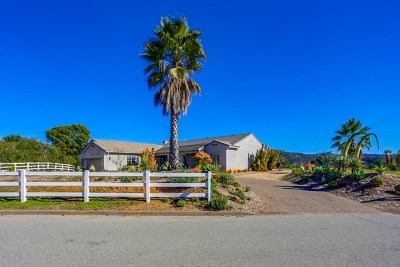 El Cajon Single Family Home For Sale: 10027 Silva